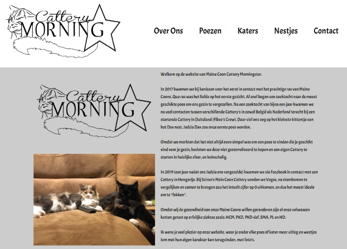 Maine Coon Cattery Moringstar